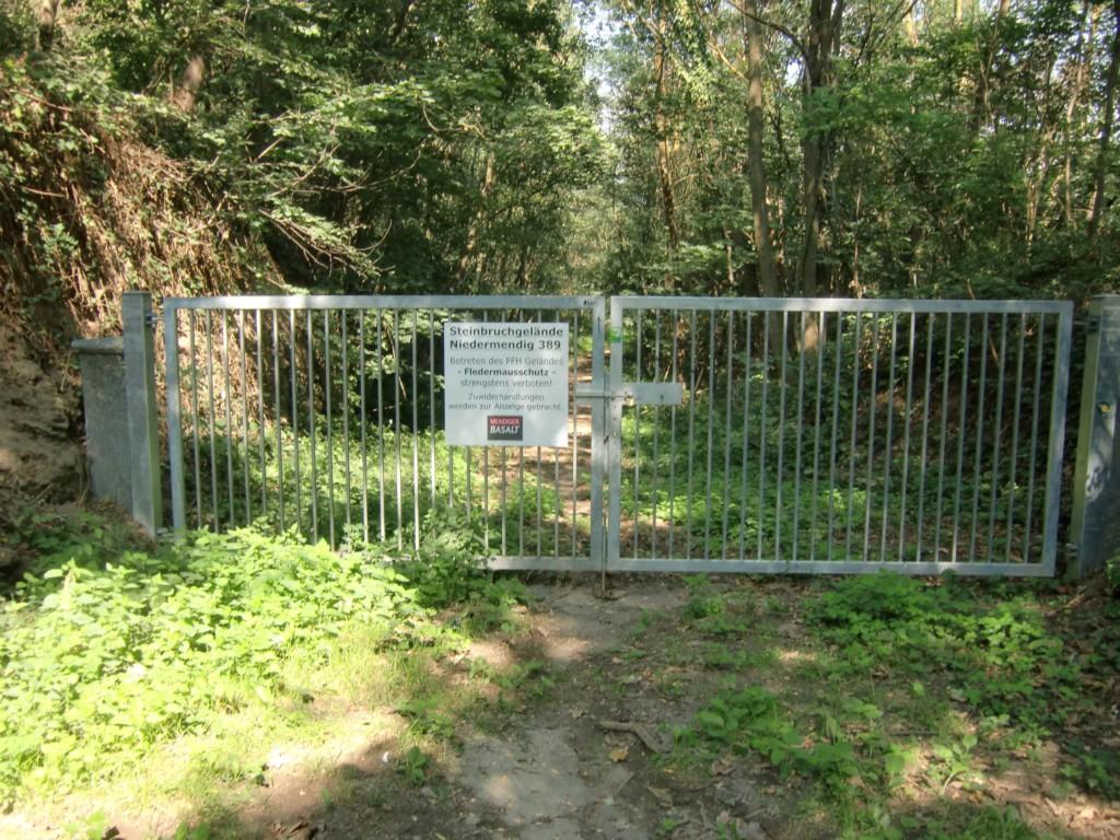 Abb. 33: Stop! Ab hier nur Zutritt für Fledermäuse… (Foto: Volker Duda)