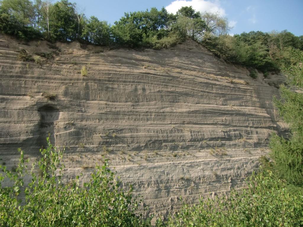 Abb. 40: die Wingertsbergwand lässt an ihren Schichten die Abfolge der Eruptionen leicht nachvollziehen (Foto: Volker Duda)