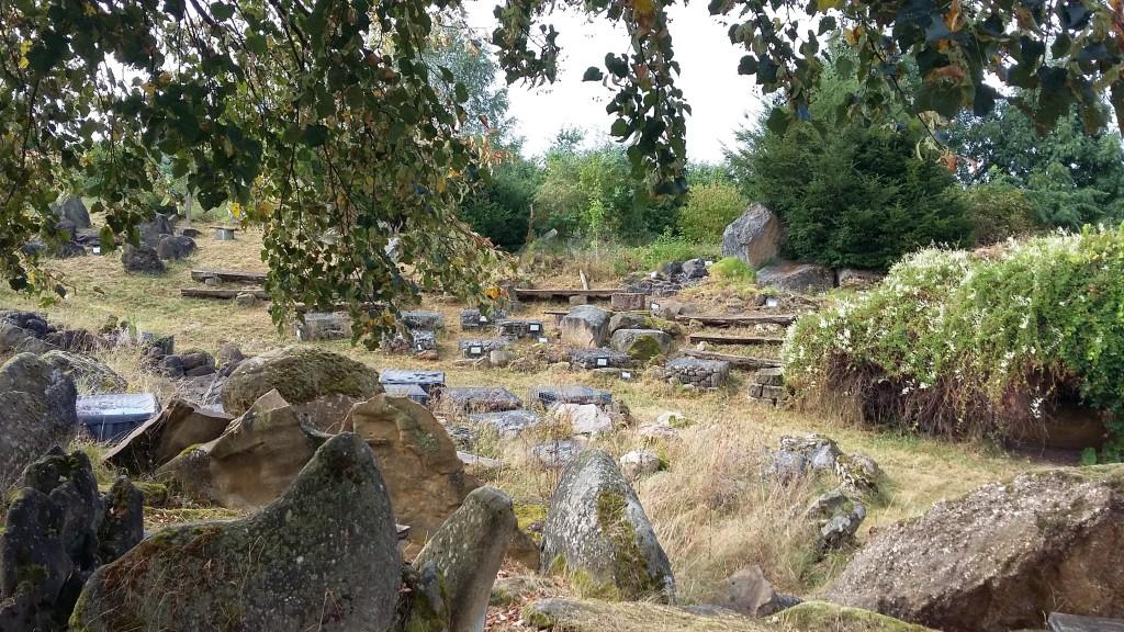 Gesteine aus allen Regionen Hessens
