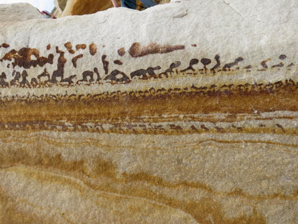 Millionen Jahre alte Schriftzeichen?