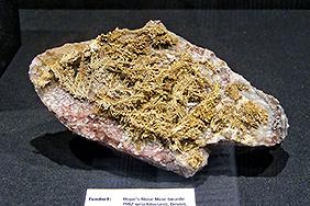 dendritisches bzw. farnartiges Gold aus Devon, Großbritannien