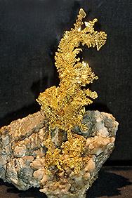 """""""Der Goldene Drache"""""""